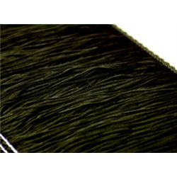 FRANSEN 15CM – BLACK – Chrisanne Clover