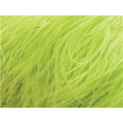 6 PLY BOA AUS REINER STRAUSSENFEDER - TROPIC LIME